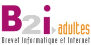 Logo b2i adultes